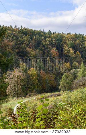 Autumn Landscape In National Park Ojcow, Poland