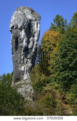 Rock Called Maczuga Herkulesa In Poland