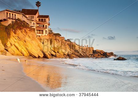 House on cliffs with playing dogs