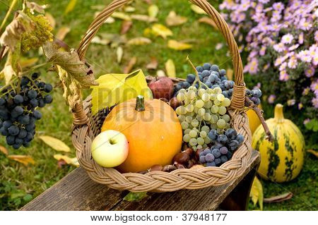 Autumn Basket