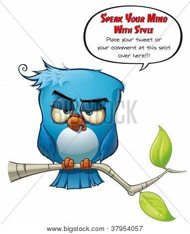 Pássaro azul sóbrio