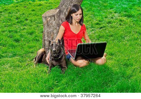 ein Mädchen mit einem Notebook sitzen unter einem Baum zusammen mit einem Hund