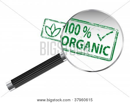 Organic Magnifying Glass