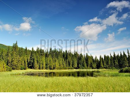 Mysterious Marichaika Lake In The Forest
