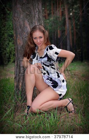 Young Sexy Girl In Wood