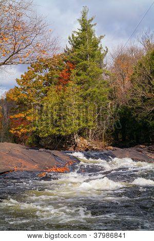 Autumn Landscape with Rapids (vertical)