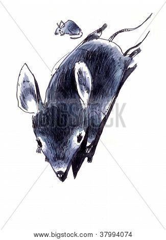 Rat child
