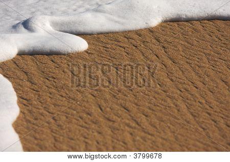 Tropical Sand And Sea Foam