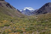 image of aconcagua  - Aconcagua valley with the Aconcagua at the back Argentinian Andes - JPG