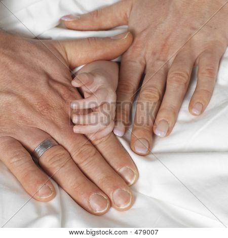 20060222 Familyhands 03 B
