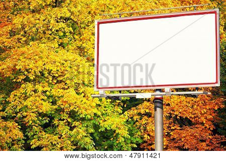 Blank White Billboard At The Park
