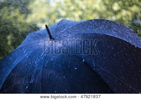 Rain drops falling on an umbrella