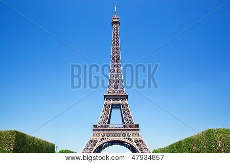 Eiffel Tower seen from Champ de Mars at a sunny summer day, Paris, France