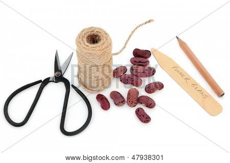 Runner bean seed sowing equipment of string, pencil, wooden labels and scissors over white background.