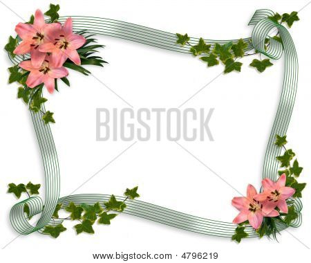 Pink Lilies, Ivy  And Ribbons Floral Border