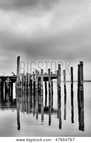 Weathered And Worn  Pier At Bodega Bay