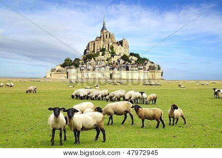 The Mont Saint Michel abbey.