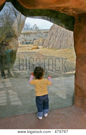 Child At The Zoo