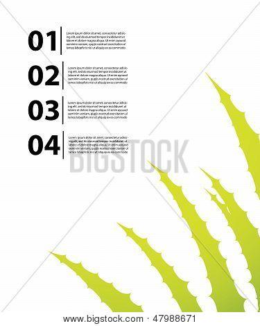 Special Flyer With Aloe Vera Design