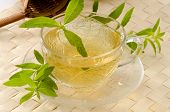 foto of naturopathy  - Lemon verbena Herbal Tea in a glass cup - JPG