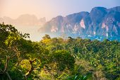 stock photo of phi phi  - Tropical landscape - JPG