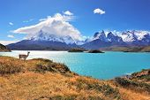 Epic beauty of the landscape - the National Park Torres del Paine in southern Chile. Graceful silhou