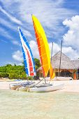 Colorful catamarans at a resort in Cayo Coco (Coco key), a beautiful tourist destination in Cuba (on a summer day with puffy white clouds on a blue sky) poster