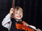 stock photo of violin  - Freckled red - JPG