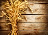 stock photo of earings  - Wheat Ears on the Wooden Table - JPG