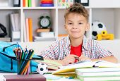 picture of adolescent  - Smiling adolescent boy doing homework at the table - JPG