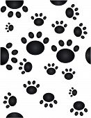 stock photo of paw-print  - Paw prints going all over the place - JPG