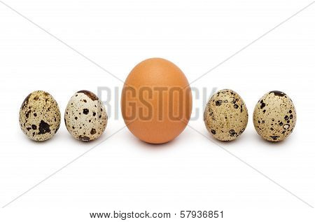 Quail And Hen's Eggs