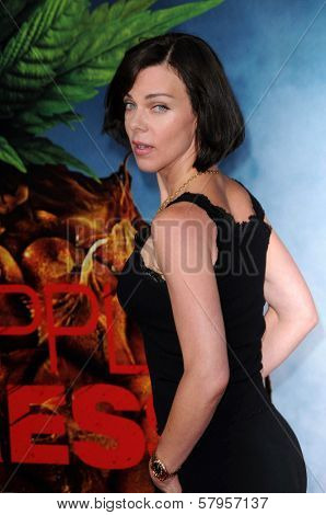 Debi Mazar  at the Los Angeles Premiere of