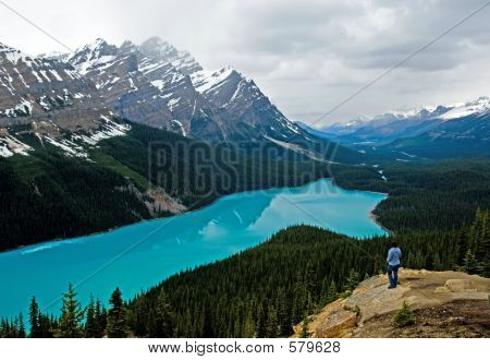 Peyto Lake At Spring