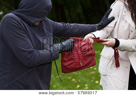 Thief In The Park