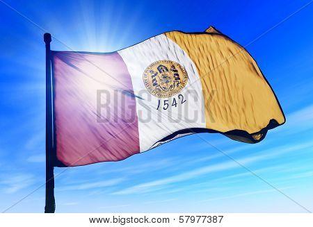 San Diego (USA) flag waving on the wind