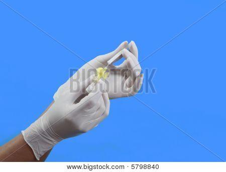 Intravenous Needle