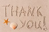 foto of beach shell art  - word of thank you to the wet sand or seashells - JPG