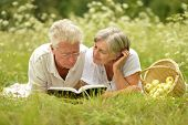 stock photo of retirement age  - Loving elderly couple having a picnic in the summer - JPG