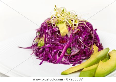 Red Cabbage and Avocado Salad