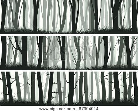 Horizontal Banners Forest With Trunks Of Trees.