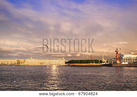 Rostral Columns Lit By Illumination Of The White Nights At Dawn In Saint Petersburg