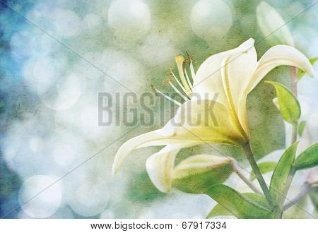 Textured old paper background with flowers
