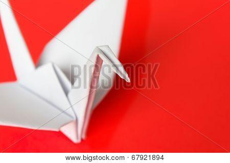 White Paper Bird