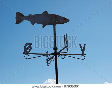 Marine Weather Vane