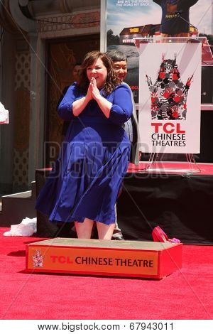 LOS ANGELES - JUL 2:  Melissa McCarthy at the Melissa McCarthy Hand and Footprint Ceremony at the TCL Chinese Theater on July 2, 2014 in Los Angeles, CA