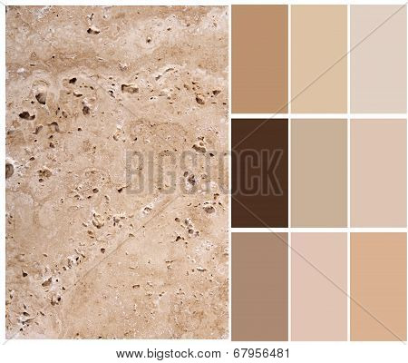 travertine  color palette swatches with complimentary