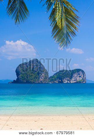 Island Lagoon Coconut Getaway