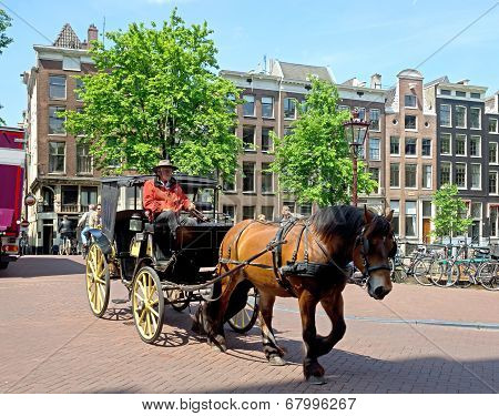 Amsterdam - Horse Drawn Carriage