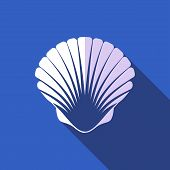 picture of scallop-shell  - White scallop seashell on blue background flat design - JPG